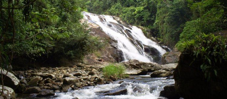 Passeios Ecológicos - Trilhas e Cachoeiras no Litoral Norte SP
