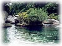 Natureza - Hotel Mar Caraguatatuba
